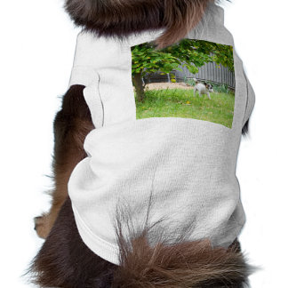 Fox_Terrier_Scare_Face,_Pet_White_Sleeveless_Top T-Shirt