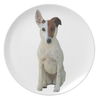Fox Terrier Smooth dog beautiful photo dish, plate