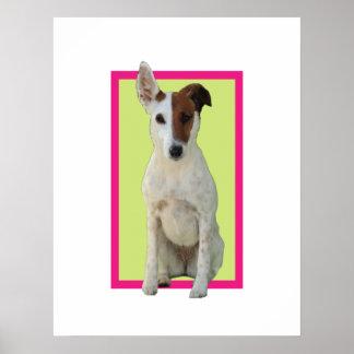 Fox Terrier Smooth dog cute photo poster print