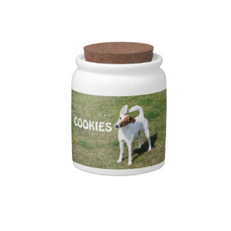 Fox Terrier Smooth dog photo cookie jar Candy Jars