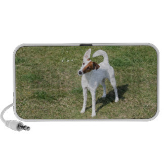 Fox Terrier Smooth dog photo doodle speakers