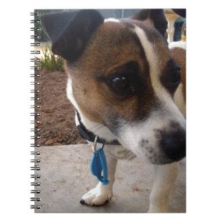 Fox_Terrier,_ Spiral Notebook