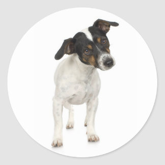 Fox Terrier Sticker