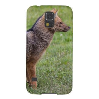 Fox - Torres del Paine Galaxy S5 Cases