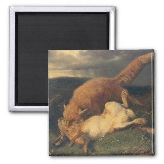 Fox y liebres, 1866 imán cuadrado
