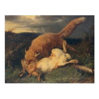 Fox y liebres, 1866 postales