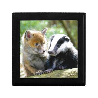 Foxcub & Badger Cute! Gift Box