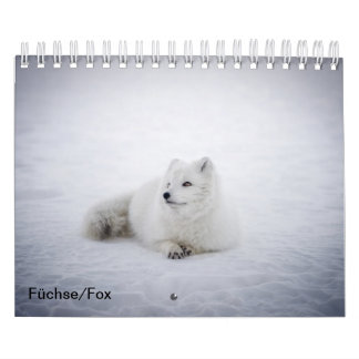 Foxes, Fox Calendar