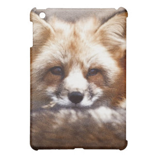 Foxes iPad Mini Covers