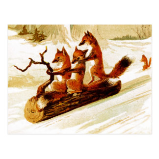 Foxes Sledding through the Snow on a Log Postcard