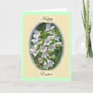 Foxglove Beardtongue Easter Card