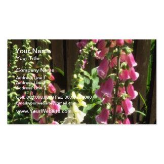 Foxglove común rosado, (digital Purpurea) flores Tarjetas De Visita