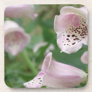 Foxglove Flowers  Cork Coasters