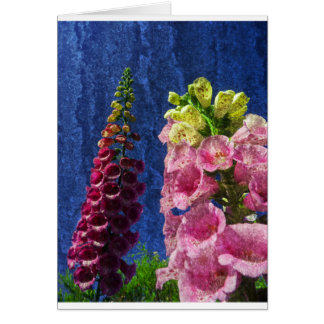 Foxglove flowers on texture with frame card