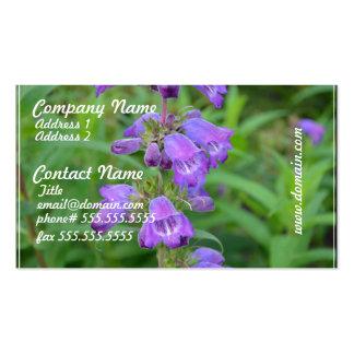 Foxglove púrpura bonito tarjetas de visita