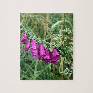 Foxglove púrpura de color rosa oscuro en el EL Puzzle