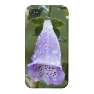 Foxglove with Dew Drops Cover For iPhone 4