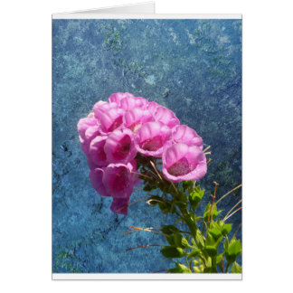 Foxglove with texture reaching for the sky. card