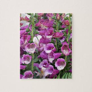 Foxgloves de color rosa oscuro puzzle