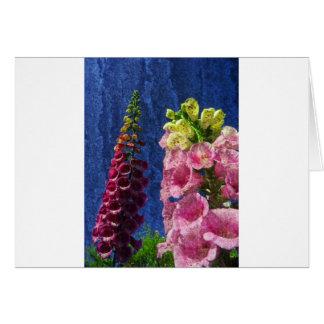 Foxgloves on texture card