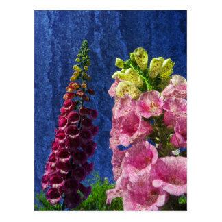 Foxgloves on texture postcard