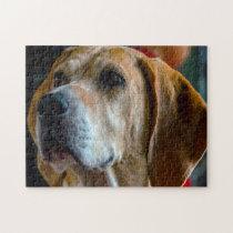 Foxhound Dog. Jigsaw Puzzle