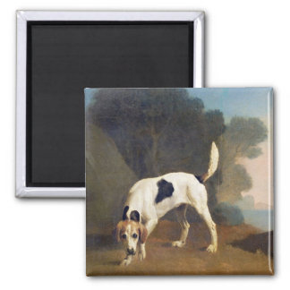 Foxhound on the Scent, c.1760 (oil on paper laid o 2 Inch Square Magnet
