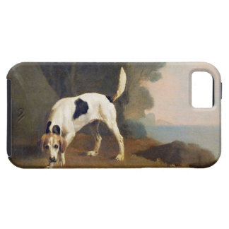 Foxhound on the Scent, c.1760 (oil on paper laid o iPhone SE/5/5s Case