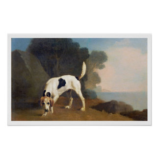 Foxhound on the Scent, c.1760 (oil on paper laid o Poster