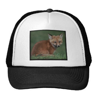 foxkit trucker hat