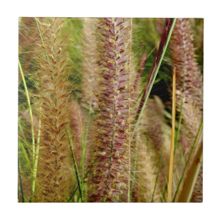 Foxtail grass macro photography picture tile