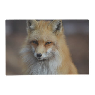 Foxy Fox Laminated Placemat