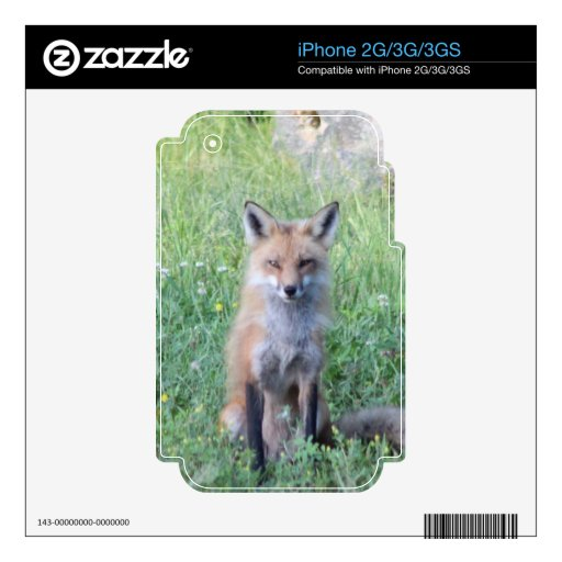 Foxy Lady Decals For The iPhone 3GS