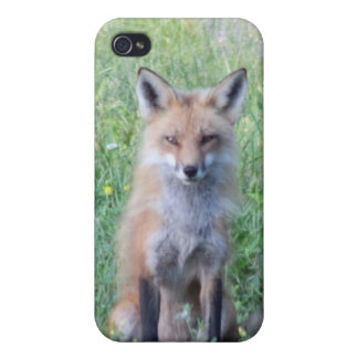 Foxy Lady iPhone 4 Covers