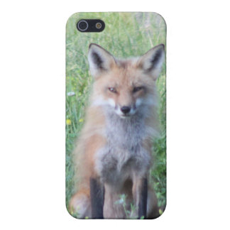 Foxy Lady iPhone SE/5/5s Cover