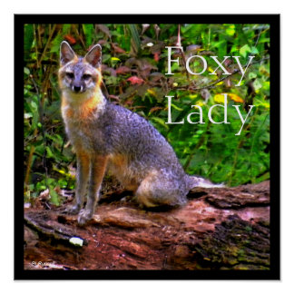FOXY LADY POSTERS