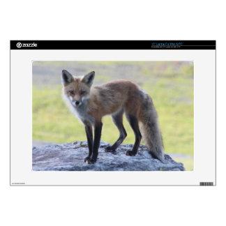 Foxy Momma Laptop Skins