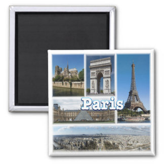 FR * France - Paris Magnet
