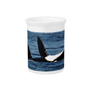 Fracaso de Belly de la orca de las orcas del Jarra De Beber