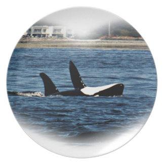 Fracaso de Belly de la orca de las orcas del Plato De Comida