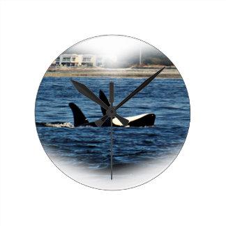 Fracaso de Belly de la orca de las orcas del Reloj Redondo Mediano