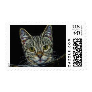 fractal-681584 CAT DIGITAL FLAMES ART BACKGROUND W Postage