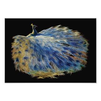 Fractal blanco del pavo real fotografía