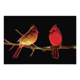 Fractal cardinal fotografía
