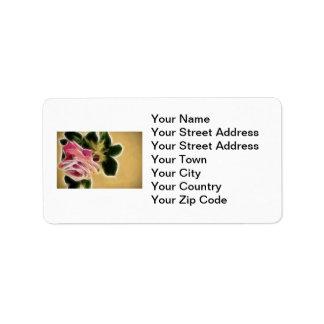 Fractal color de rosa de la foto etiquetas de dirección