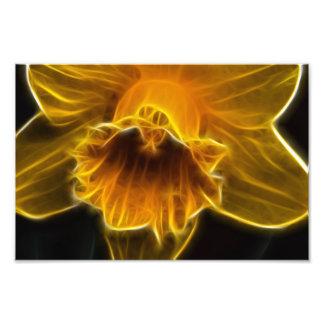 Fractal de la flor del narciso impresiones fotográficas