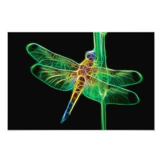 Fractal de la libélula fotografías