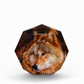 Fractal del lobo rojo