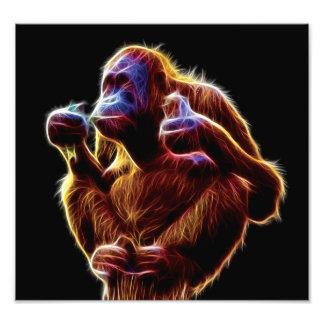 Fractal del orangután cojinete
