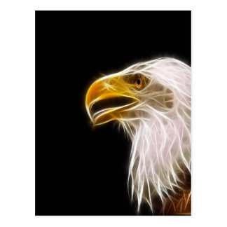 Fractal Eagle Head Custom Design Postcard